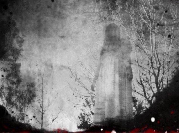walked ghost forest, finally Ar - roddiemac   ello