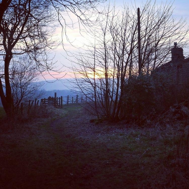 magical scene, captured twiligh - alexander_de_witte | ello