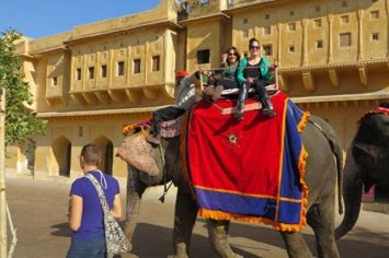 Elephants symbolise Royal Cultu - elefanjoys | ello