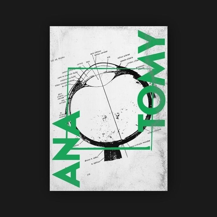 ANA:black_circle:️TOMY  - poster - rottwang   ello