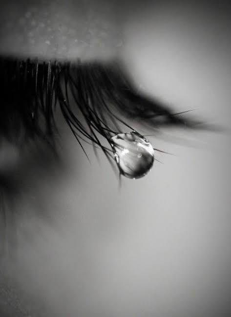 Punjabi Sad Love Quotes Shayar  - thepunjabishayar | ello