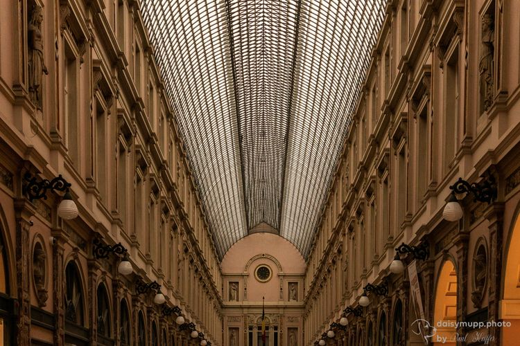 Galerie de la Reine - daisymupp | ello