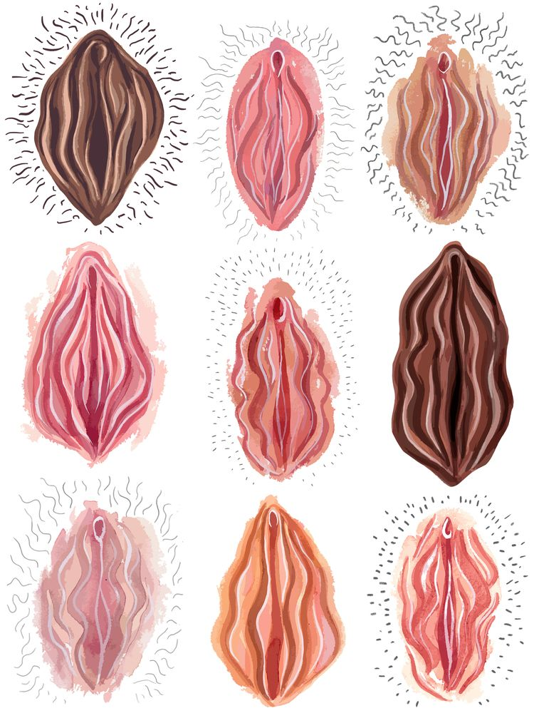 Vagina Pattern - feminist, labia - reneeleigh   ello
