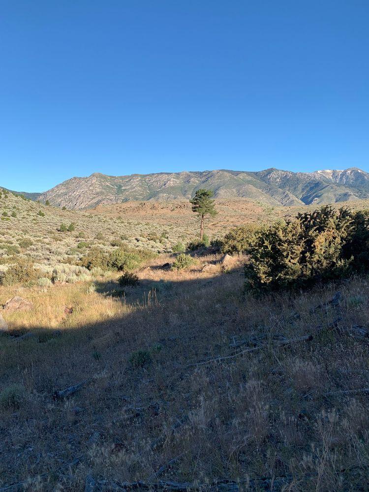 Backcountry South Lake Tahoe - adamgetchell | ello