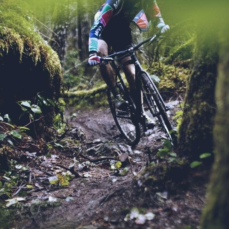 Cycling Posts