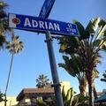 Adrian (@adsantacruz) Avatar