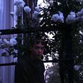 Yama Yoani (@hemerocalys) Avatar