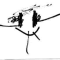 (@windfish) Avatar