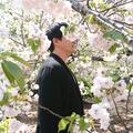 ASiO (@jp060322) Avatar