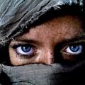 TAROT ALEX ARRINGT (@alexarrington) Avatar