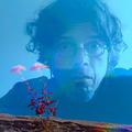 Tilike Coelho (@tilikecoelho) Avatar