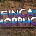 Finca Morpho (@fincamorpho) Avatar
