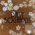 Daisy Bogaards (@daisybel) Avatar