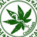 considercannabis