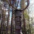 Pertti Keränen (@perttikeranen) Avatar