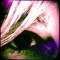 Lisa McCollom  (@feralcat) Avatar