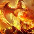 phoenixdragon (@phoenixdragon) Avatar