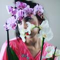 Zuzu Louise  (@porcupineglove) Avatar