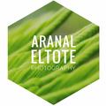 Aranal Eltote (@aranal) Avatar