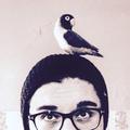 Jojo Zuccarato  (@sugar_jojo) Avatar