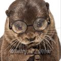 Hairy P. Otter (@hairy_p_otter) Avatar