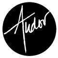 Ann Tudor LLC (@anntudorllc) Avatar