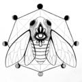Madison McClain (@mcclainillustration) Avatar