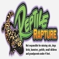 Reptile Rapture (@reptilerapture) Avatar