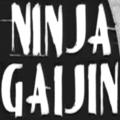 Ninja Gaijin (@ninjagaijin) Avatar