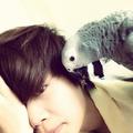 MINT_CHULA (@mint_chula) Avatar