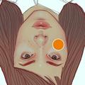 KATZ (@misskatz) Avatar