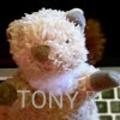 @tonyhumpsss Avatar