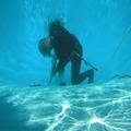 Aquaman Leak Detection (@aquamanleakdetection) Avatar