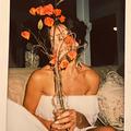 Ashlee  (@dreamslice) Avatar