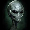 E.T. (@greymatter) Avatar