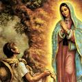 Virgen de guadalupe (@virgendeguadalupe) Avatar
