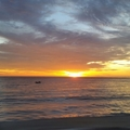 Beautiful Barbados  (@empressdine) Avatar