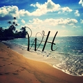 Woven Hawaii (@wovenhawaii) Avatar