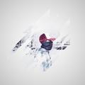 Artur Mendes (@tullynhom7) Avatar