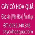 Hoa hoe (@hoahoe) Avatar