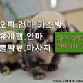 이천오피[오피쓰] (@icheonopss) Avatar