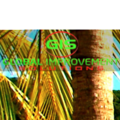 Global Improvement Solutions (@globalimprovementsolutions) Avatar