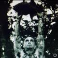 Eric Rodgers (@jupitercyclops) Avatar