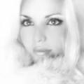 Lauren (@zengun1984) Avatar