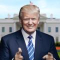 The Trump Vision (@thetrumpvision) Avatar
