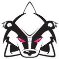 @deathisabadger Avatar