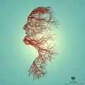 Pedro Costa (@campovisual) Avatar