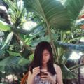 Josephine Sugiharto (@joseephines) Avatar