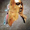 Lyndon (@lyndonp) Avatar