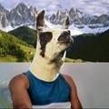 @matheusalbuquerque Avatar
